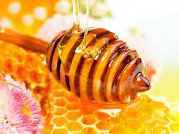 عسل تغذیه 1